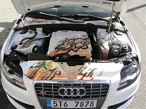 Audi A4 / motorove kryty / airbrush / zlaceni / gold leaf / pinstriping /